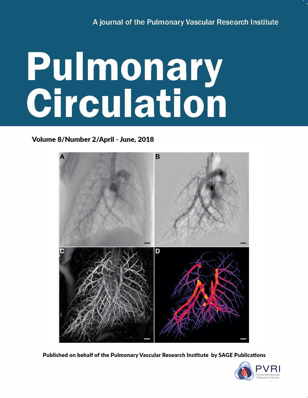 Explore Pulmonary Circulation Journal | PVRI